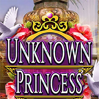 Unknown Princess